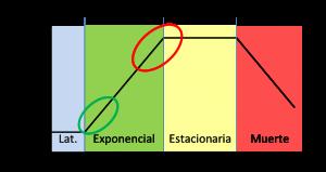 Crecimiento celular gráfica