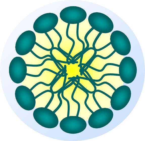 Transfección con vectores no virales
