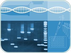 Curso practico PCR convencional