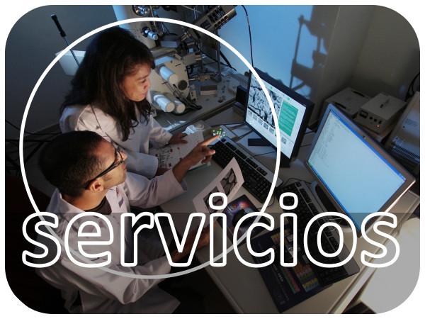 Servicios On Science