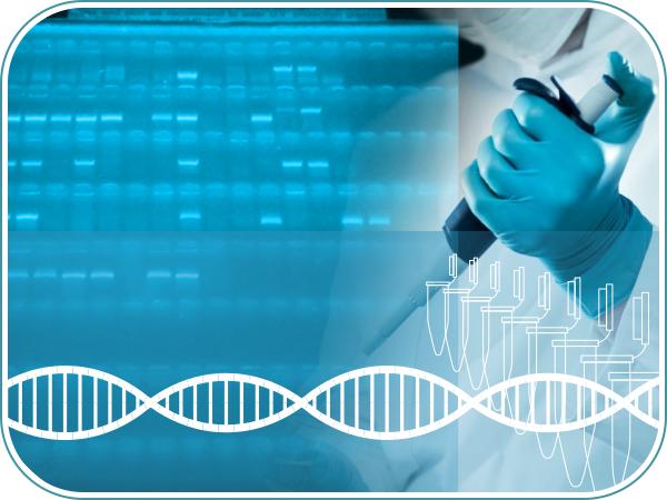 Curso practico biologia molecular PCR a tiempo final presencial hands-on y online