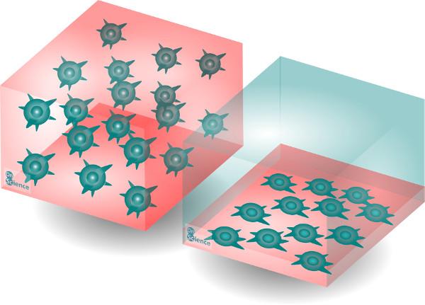 Cultivos celulares 2D y 3D