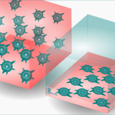 Cultivos celulares 3D en biotecnologia