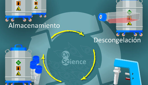 Poster el ciclo y los 5 tips de cultivo celular